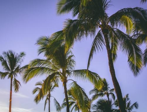 Aprende marketing digital durante las vacaciones